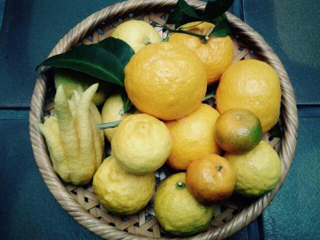 Юзу фрукт