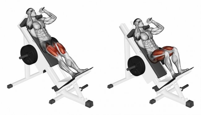 Упражнения для ног в зале для мужчин